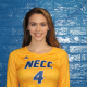 NECC Volleyball Players Named to All-Region Teams