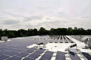 These solar panels on the roof of Leewood Realty will generate solar energy for NECC.