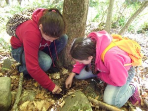NECC's new STEM College for Kids at Quarrybrook will explore the 265 acres of hiking trails, vernal pools, and natural space.
