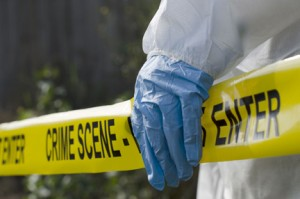 Work your way through crime scene forensic stations.