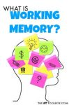 What is working memory?