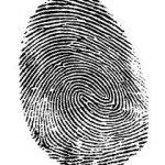 Enlarged finger print.