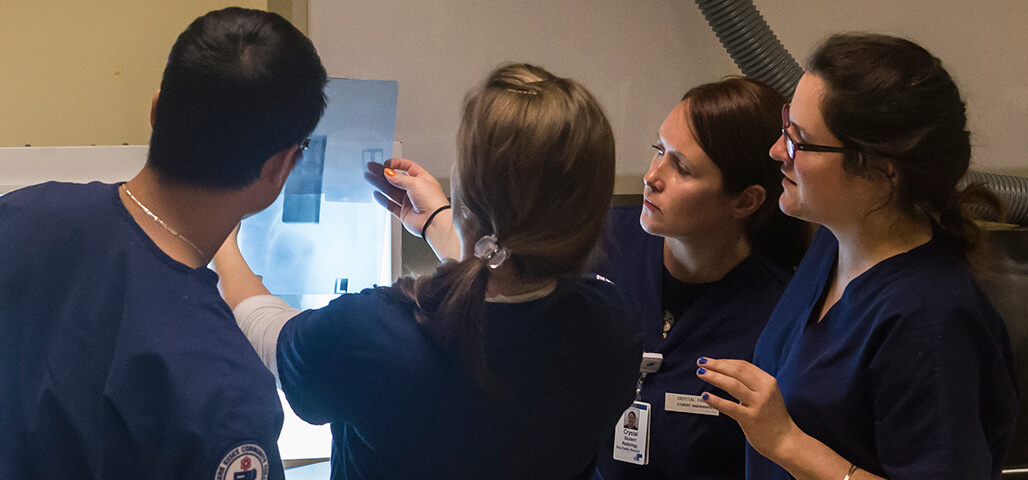 Four students in the Radiologic Technology program at NECC examine an X-ray.