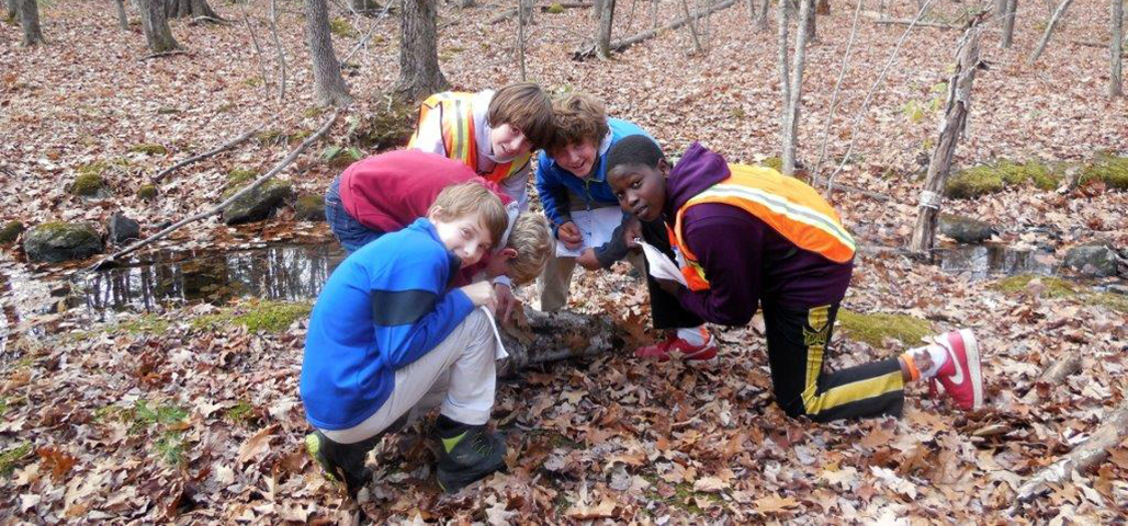 5 young boys at Quarrybrook, outside by a stream, collect samples from the ground.